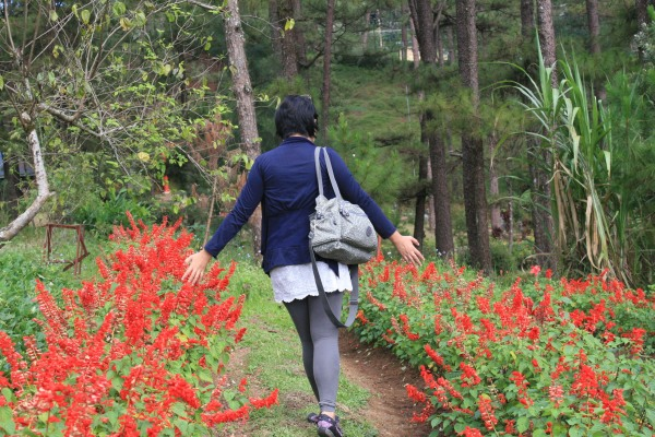 Playing with the blooms at Baguio Botanical Garden
