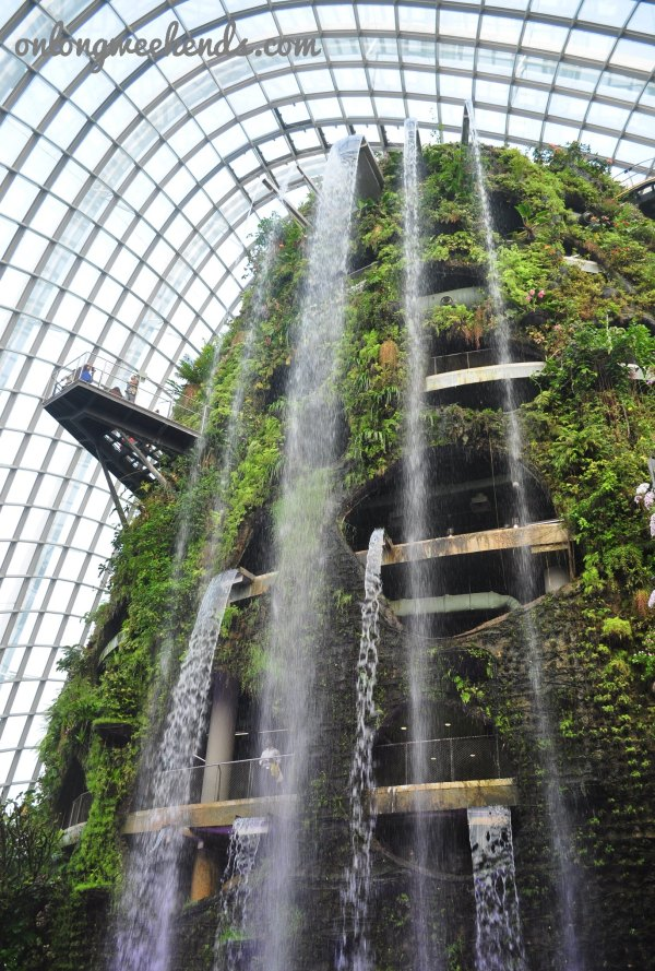 The waterfalls inside tha Rainforest Dome.