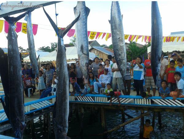 Foto Friday : Gamefishing